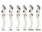 天艺舞蹈双11成人体型塑造完美身形 钜惠活动