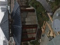 潮州金石花木场,绿色盆栽