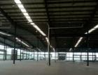 金湾13000平方钢结构厂房招租