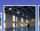 成人、少儿游泳培训