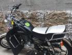 黑色太子摩托车全新车,