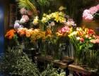 選擇靡林熊貓連鎖,鮮花店創業簡簡單單