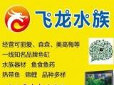 花地湾――扬泰机场――姜堰