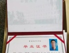 寿光市内朋友可以报考潍科成教中心成人本专科学历