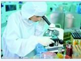 批发长双歧杆菌 活性乳酸菌 益生菌 肠道保健菌 保健品原料