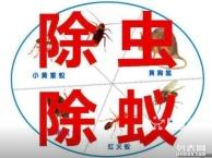 合肥灭鼠,灭蟑螂,杀虫,灭蚂蚁,灭蚊蝇公司