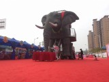 杭州大象展覽設備 機械大象出租