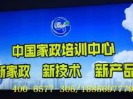 郑州家政加盟,郑州家政公司加盟,郑州保洁公司加盟
