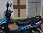 诚心低价转让品牌电动车,60v20安的电瓶,耐骑,行驶半年时