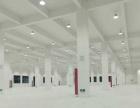 新站区全新框架厂房1到3层3000至1万方