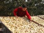 大量供应酸梨干纯手工制作太阳光晾晒