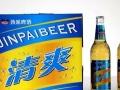 啤酒招商 夜场啤酒 流通啤酒 啤酒代理批发