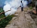 佛山除甲醛 空气净化 白蚁防治 杀虫灭鼠