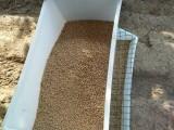 养鸭料槽 塑料鸭食槽 鸭子料箱生产厂家