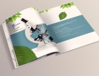 专业画册设计 包装设计 VI设计 网站设计 产品摄影