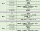 杭州哈林秀王青少年篮球培训塞尔维亚篮球夏令营招生中