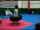 杭州散打搏击拳击防身术实战跆拳道--洪流武道馆