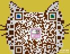 【萌一点宠物】保证照片与实猫相符,价格真实不做假
