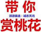 2019平谷桃花节时间地点 2019平谷桃花节一日游 二日游