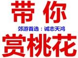 2020年平谷桃花节旅游线路参考 桃花节一日游 两日游