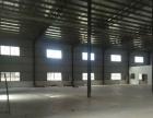 乌石全新钢结构厂房2440平方出租