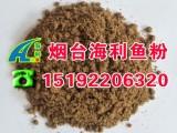 美国进口鸡肉粉 宠物级鸡肉粉饲料 蛋白67