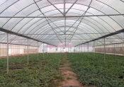 蔬菜大棚工程配件价格范围-大棚配件厂家