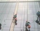 蜘蛛人高空作业 专业玻璃清洗 地毯清洗 大理石结晶