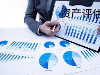專業快速出具以下報告: 審計報告 資產評估 土地評估