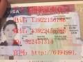 日本唐人街华人工作安排,谁能签呢?-平安签证