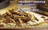欢迎进入-!北京回收冬虫夏草回收鱼肚回收冬虫夏草首页头条新闻