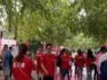 北京专业派发传单 海报张贴 社区派发展会协助跑腿服务