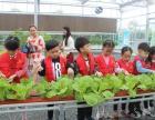 杭州语言表达训练价格