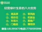 苏州绿叶集团有实力的团队