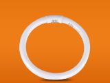 FSL佛山照明T5环形灯管圆形三基色 节能灯管
