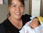 思安家提供专业月嫂、育婴师、催乳师、陪护来电优惠