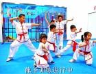 北京市武术防身 特技表演培训 龍圣搏击俱乐部