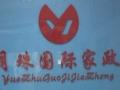 周浦哪里有正规的家政服务公司