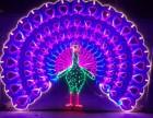 恐龙租赁 灯光节艺术造型制造安装