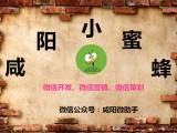 咸阳做广告营销策划互联网宣传的公司