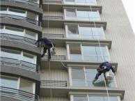蓝月亮家政公司,高空外墙玻璃清洗与家庭保洁