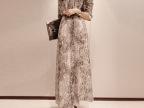 高品质2014秋季新款促销 波西米亚蛇纹雪纺连衣裙长袖连衣长裙