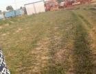 桃林中学后面 土地 2000平米