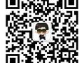 郑州高端网站建设网页用户界面