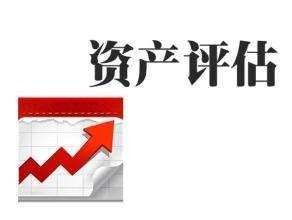 整体资产评估,无形资产评估,各类单项资产评估