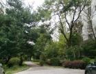 南片区吉象园小区100平方米精装修带部分家具每月租金800元