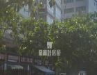 杏南曾营小学旁,精装三房,黄金楼层,正规小区,拎包入住