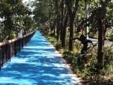 德兴公园彩色沥青路面施工报价
