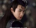黑斑猫赠送,接受回访,上门抱,上海和苏州两地