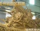 福建福州校园雕塑 文化墙浮雕 玻璃钢材质雕塑